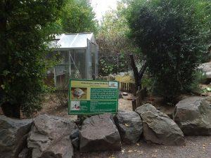 Außenanlagen für Landschildkröten (Reptilium Terrarien- und Wüstenzoo Landau)