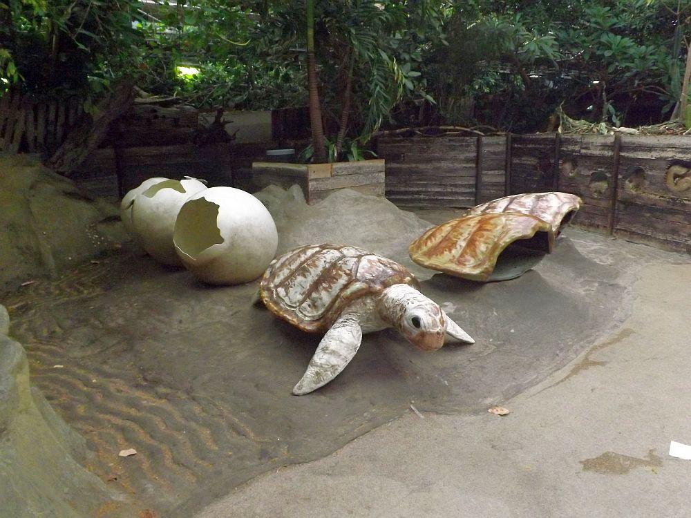 Schildkrötenspielplatz (Zoo Rotterdam)
