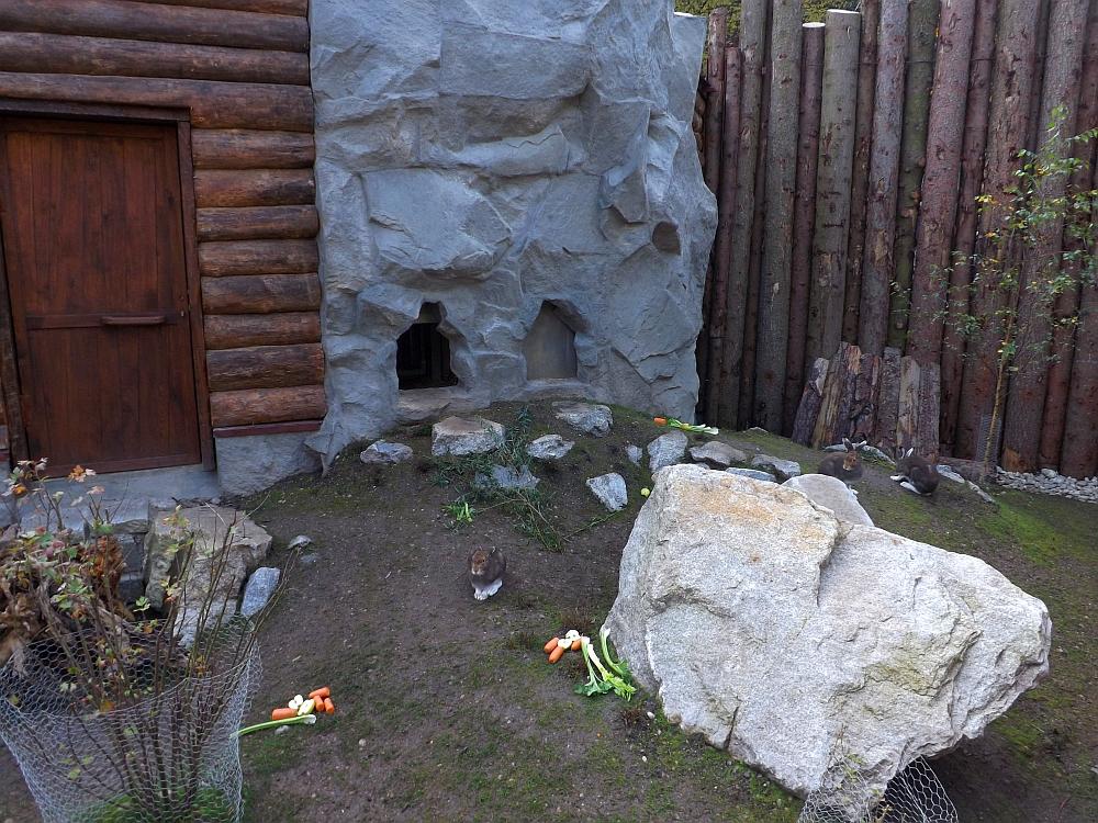 Schneehasenanlage (Tierpark Hellabrunn)