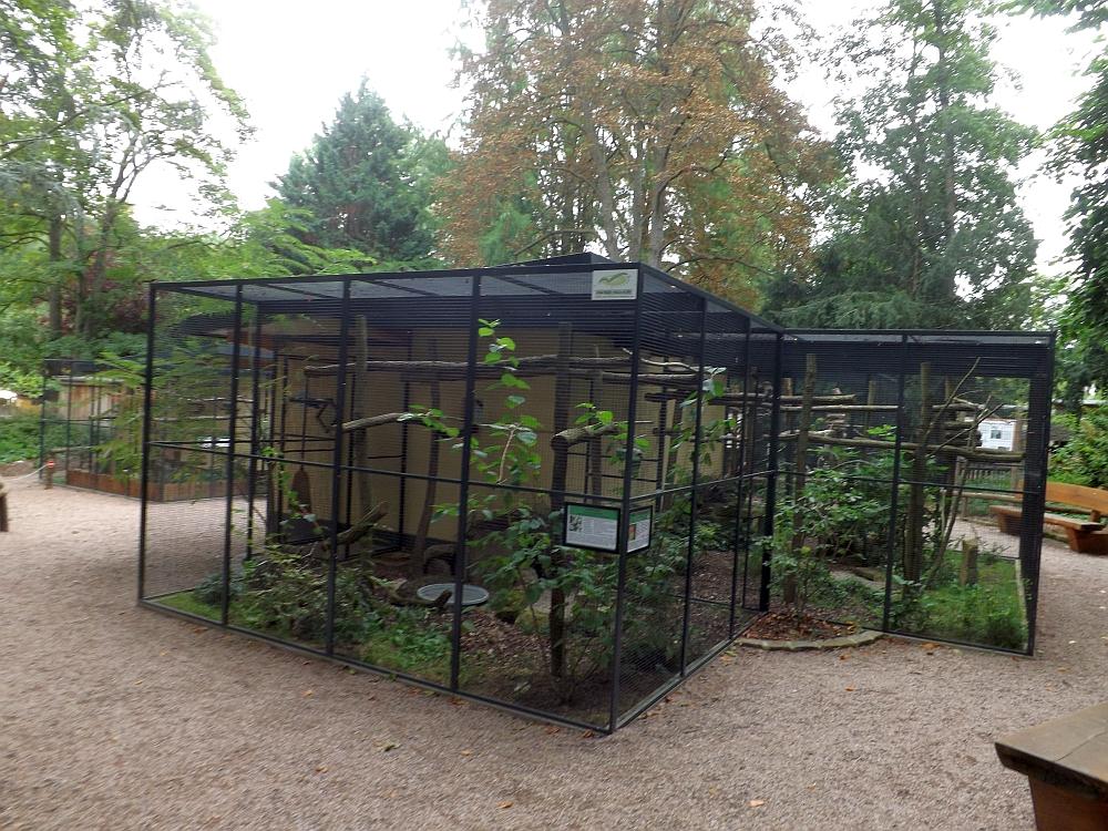 Voliere für bedrohte Vögel (Zoo Landau)