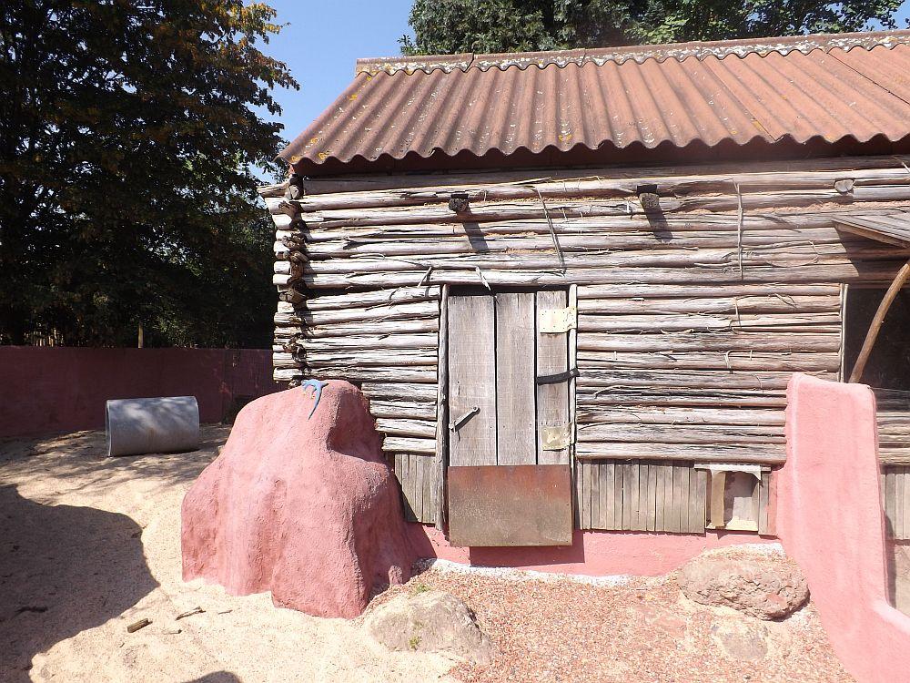 Außenanlage für Wombats (ZooPlanckendael)