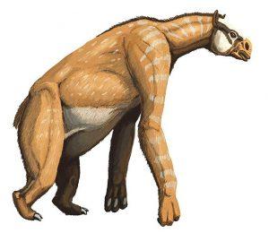 Anisodon grande (Dmitry Bogdanov)