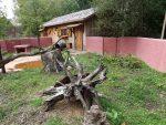 Beutelteufelanlage (Zoo Planckendael)