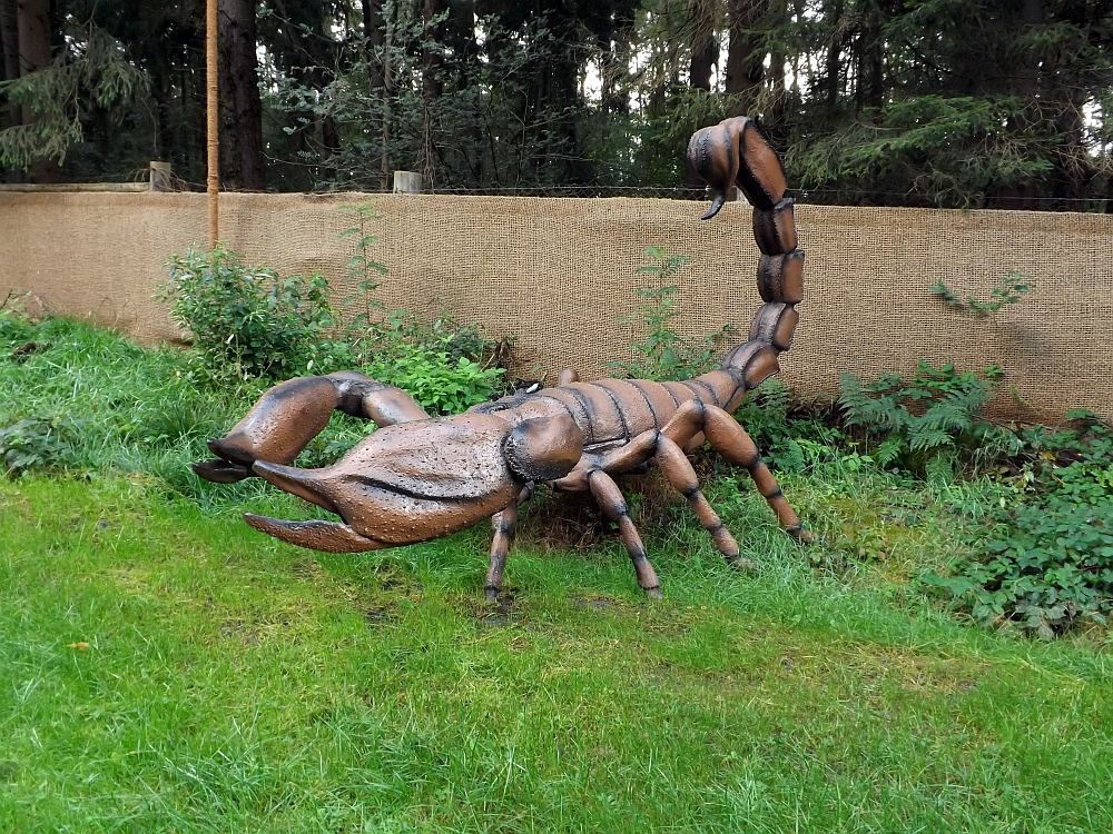 Skorpion (Serengetipark Hodenhagen)