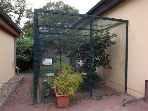 Graumöwenvoliere (Tiergarten Bernburg)