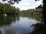 Teich (Wildpark Höllohe)