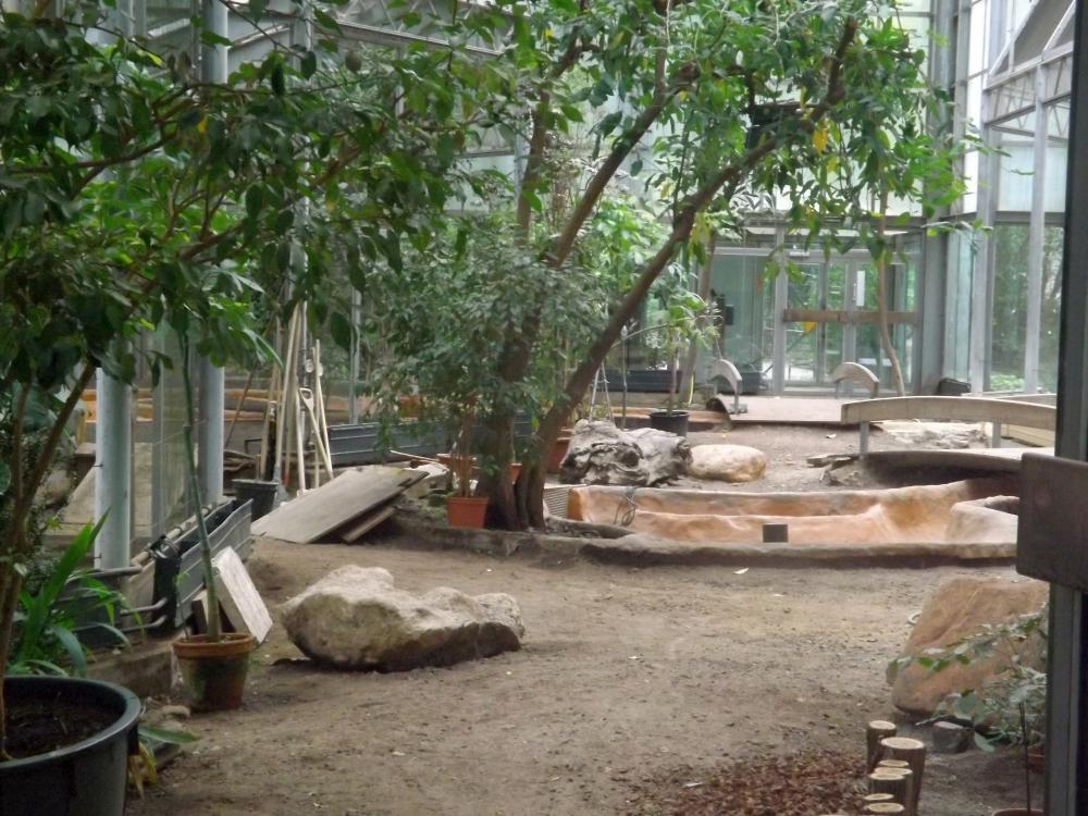 Baustelle Vogelhaus (Zoo Krefeld)