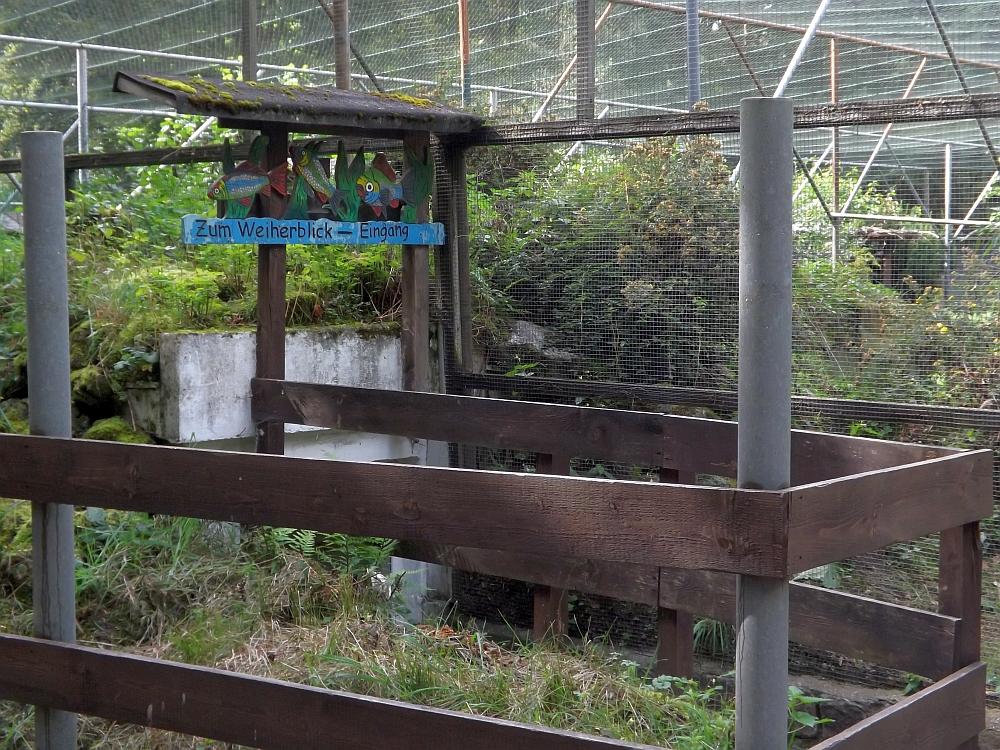 Weiherblick (Wildpark Höllohe)