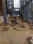 Baustelle Erdmänncheninnenanlage (Zoo Augsburg)