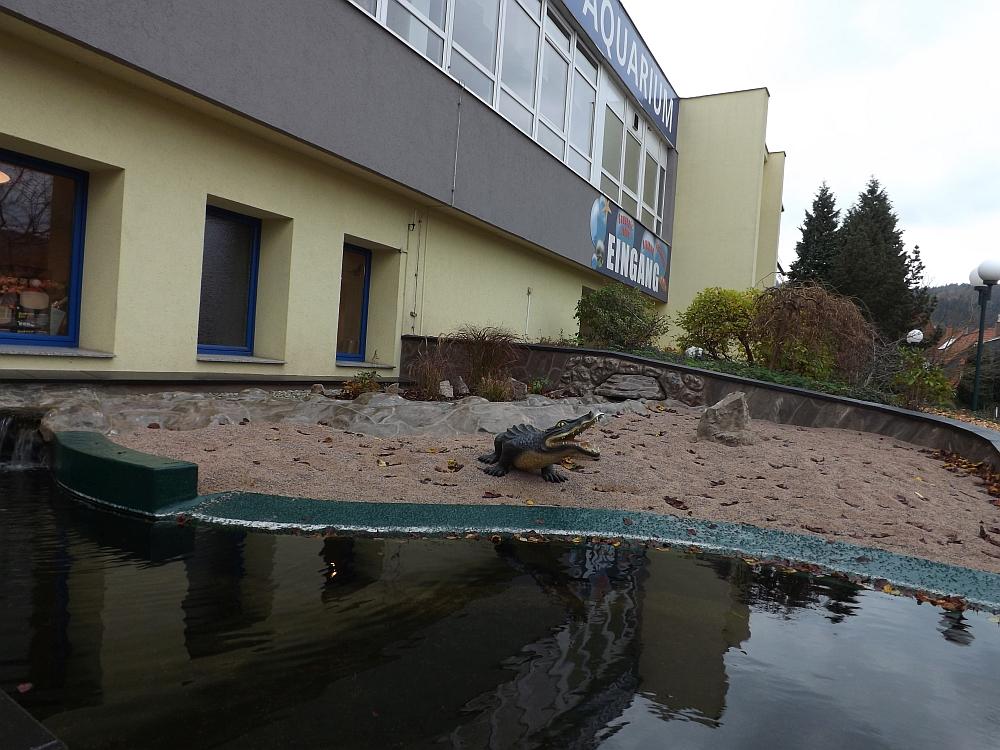 Erlebnispark Meeresaquarium Zella-Mehlis