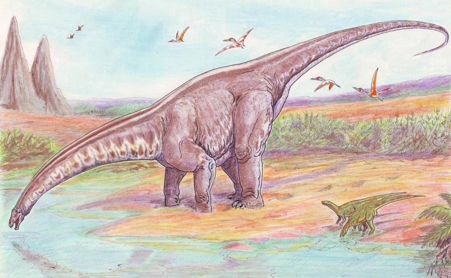 Apatosaurus louisae (Dmitry Bogdanov)