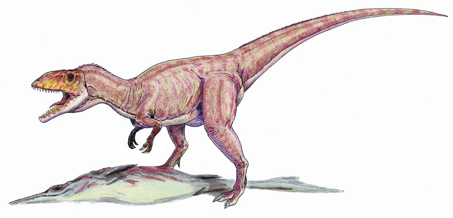Eustreptospondylus oxoniensis (Dmitry Bogdanov)