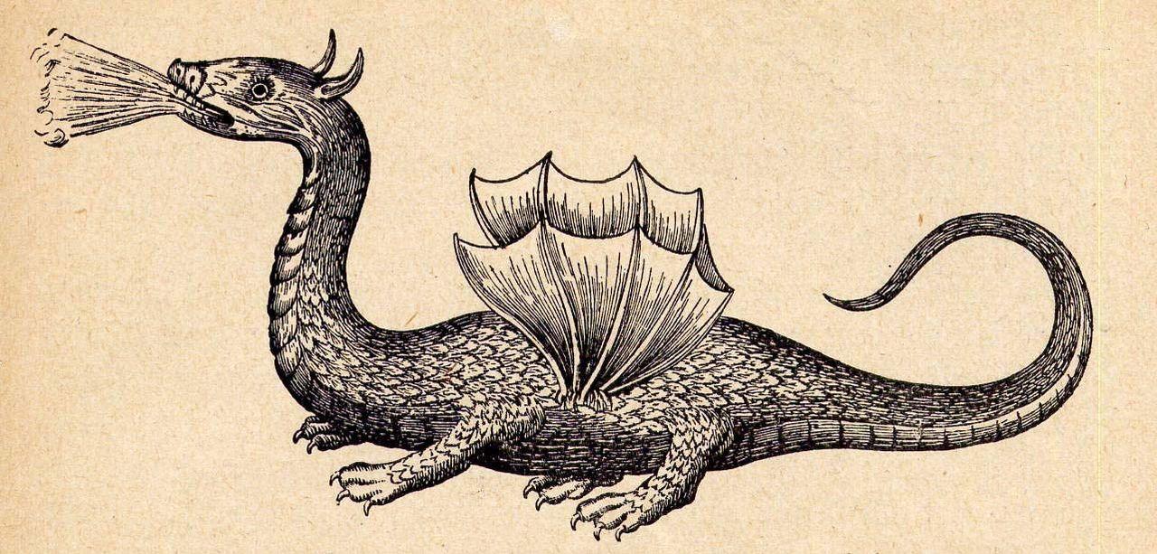 Großer Drache von der Insel Rhodus (aus Athanasius Kirchers Mundus Subterraneus, 1665)