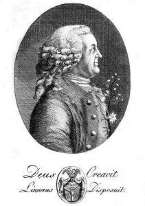 """Anonymes Porträt mit der Inschrift """"Deus creavit, Linnaeus disposuit"""" (""""Gott erschuf, Linné ordnete"""") aus Dietrich Heinrich Stövers Leben des Ritters Carl von Linné von 1792"""
