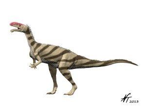 Noasaurus leali  (© N. Tamura)