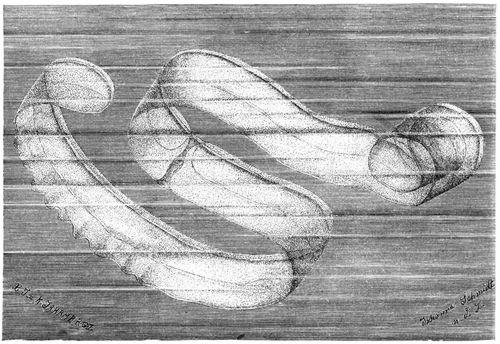 Venusgürtel (Brehms Tierleben)
