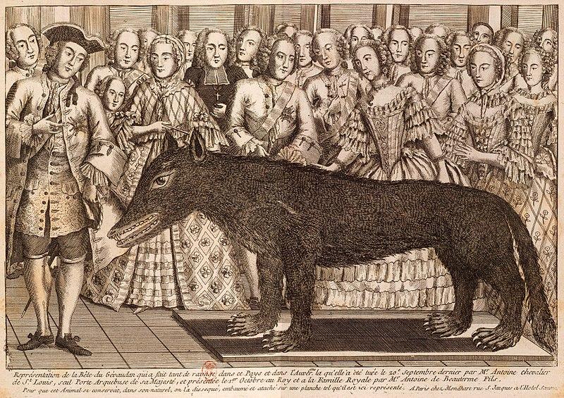 Der Balg des von François Antoine am 20. September 1765 erlegten Wolfs wurde auf einen hölzernen Kern montiert und in einem Vorzimmer des königlichen Palastes zur Schau gestellt.