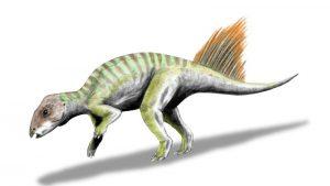 Hongshanosaurus houi (© N. Tamura)