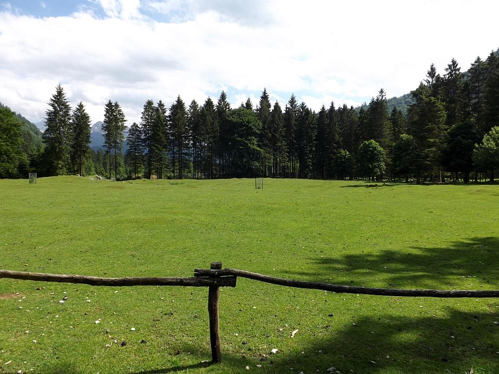 Damhirschanlage (Cumberland-Wildpark Grünau)