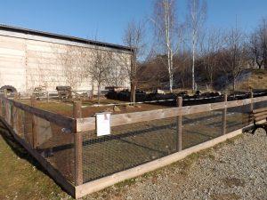 Fragwürdige Siamanganlage (Thüringer Zoopark)