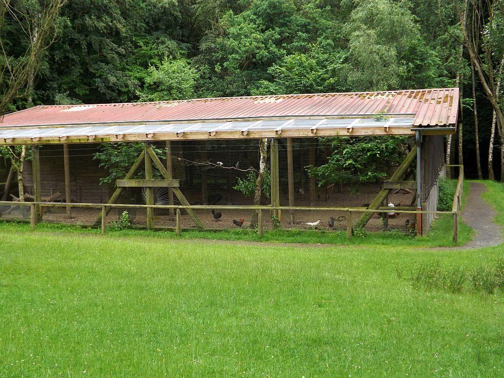 Hühner- und Taubenvoliere (Wildpark Knüll)