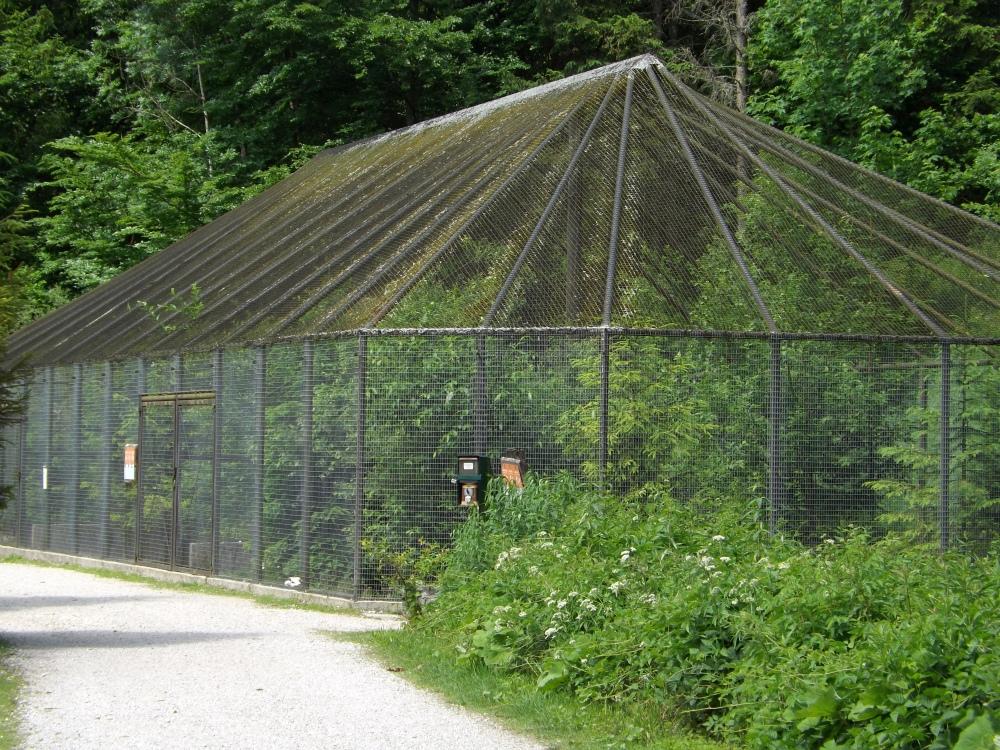 Wassergeflügelvoliere (Cumberland-Wildpark Grünau)