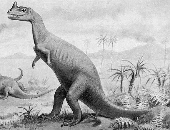 Ceratosaurus (T. Smit)