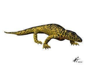 Mycterosaurus longiceps (© N. Tamura)