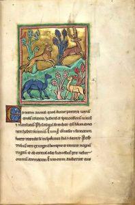 Folio 7r aus dem Rochester-Bestiarium (13. Jahrhundert, British Library, Royal MS 12 F XIII)
