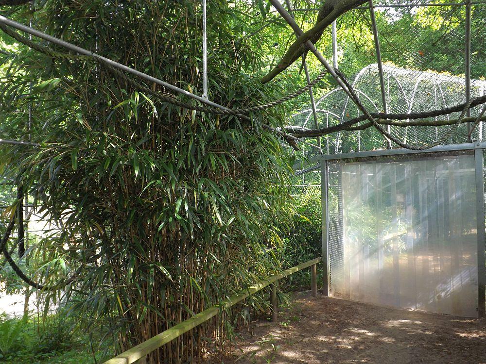 Begehbare Krallenaffenanlage (Zoo in der Wingst)