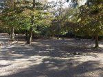 Damhirschanlage (Wildpark Bad Mergentheim)