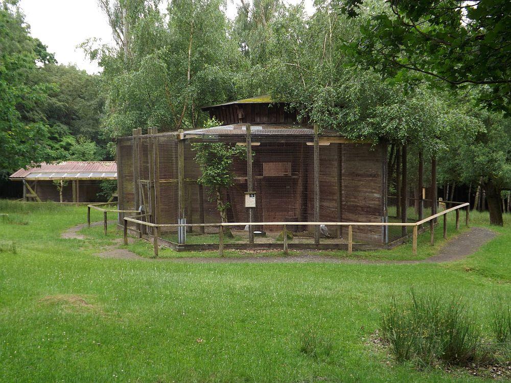 Eulenvolieren (Wildpark Knüll)