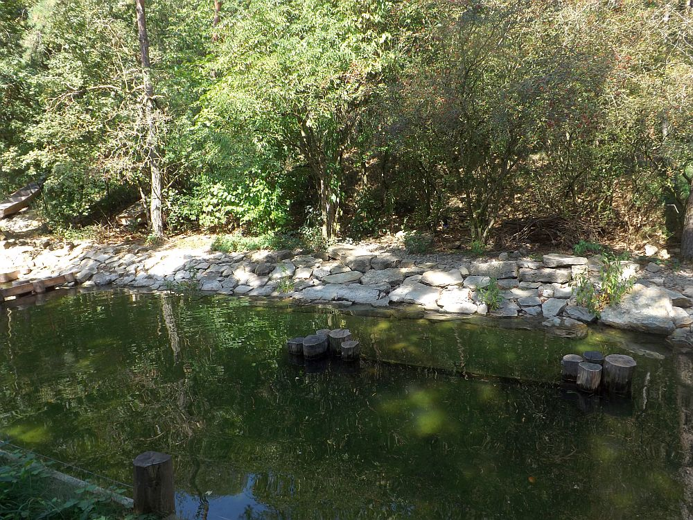 Fischotteranlage (Wildpark Bad Mergentheim)