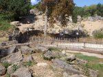 Anlagen für Schafe und Steinböcke (Wildpark Bad Mergentheim)