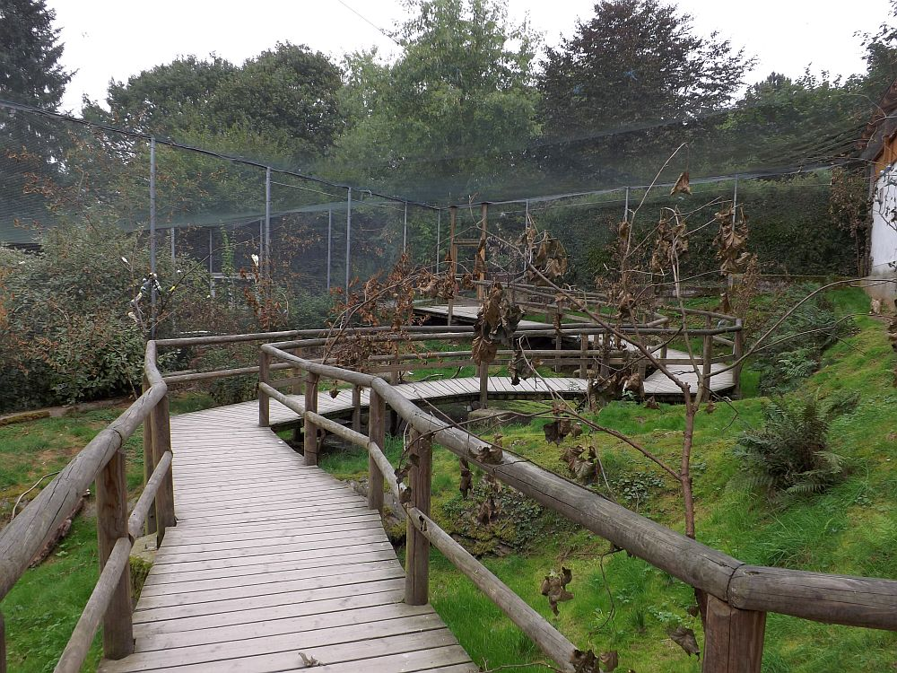 Sittichvoliere (Affen- und Vogelpark Eckenhagen)