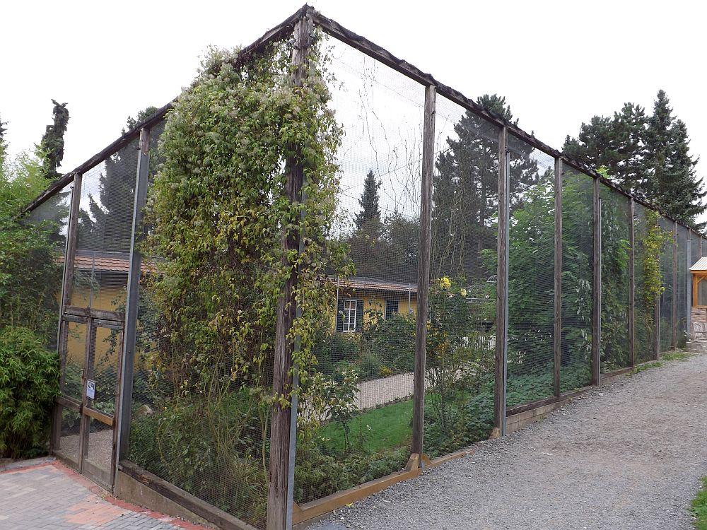 Taubengarten (Affen- und Vogelpark Eckenhagen)