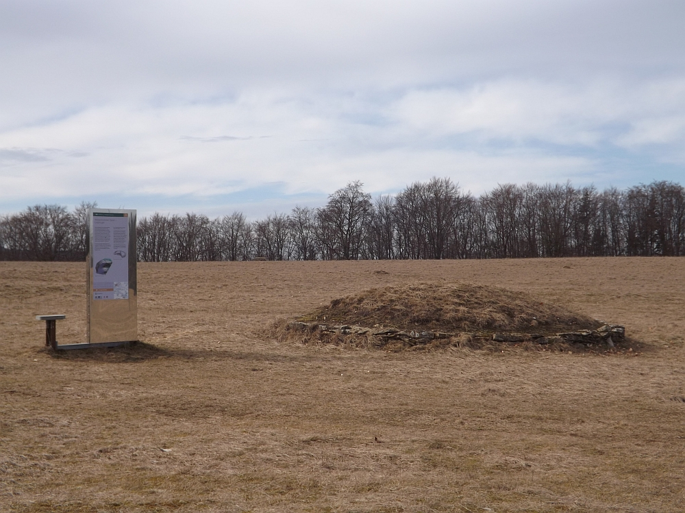 Grabhügel auf dem Waizenhofener Espan