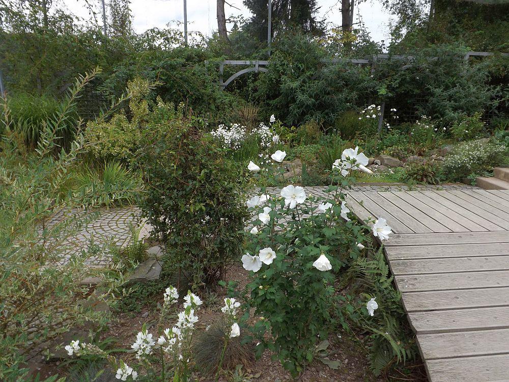 Weiße Voliere (Affen- und Vogelpark Eckenhagen)