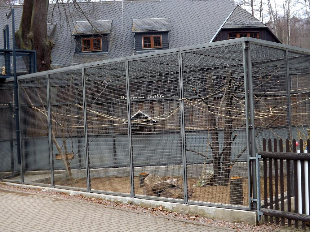 Affenanlage (Wildpark Osterzgebirge)