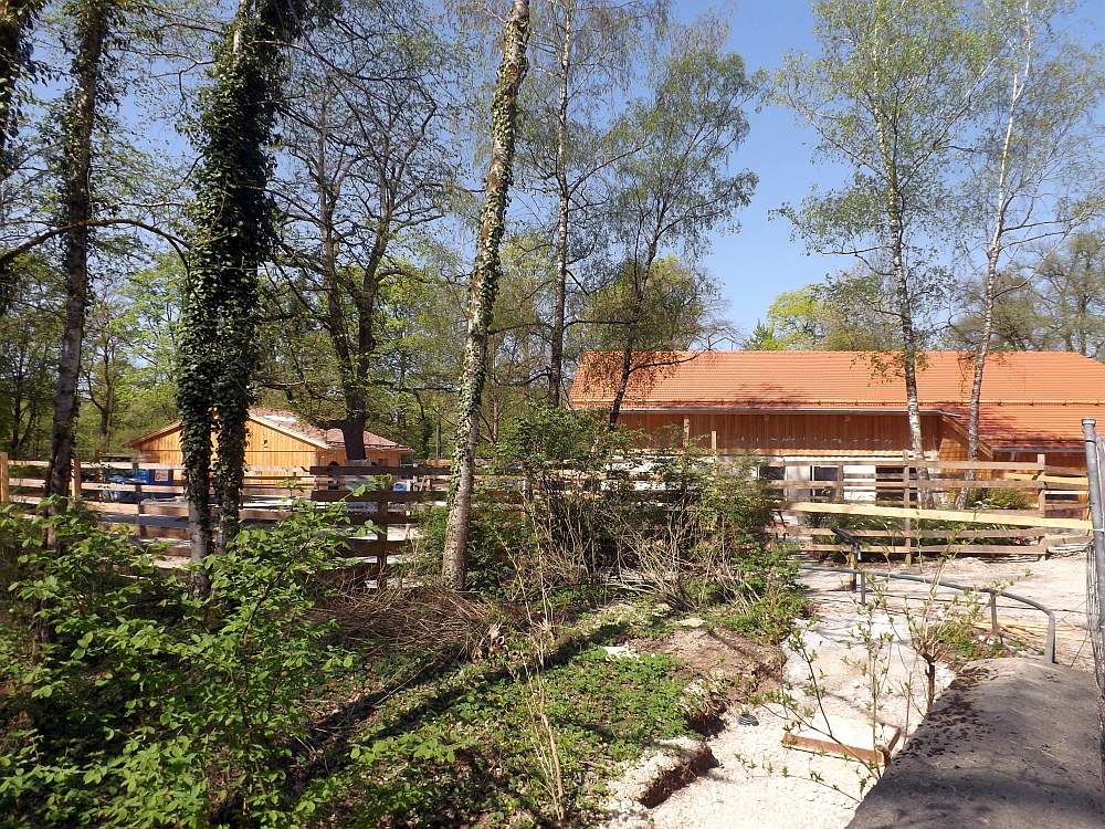 Baustelle Mühlendorf (Tierpark Hellabrunn)