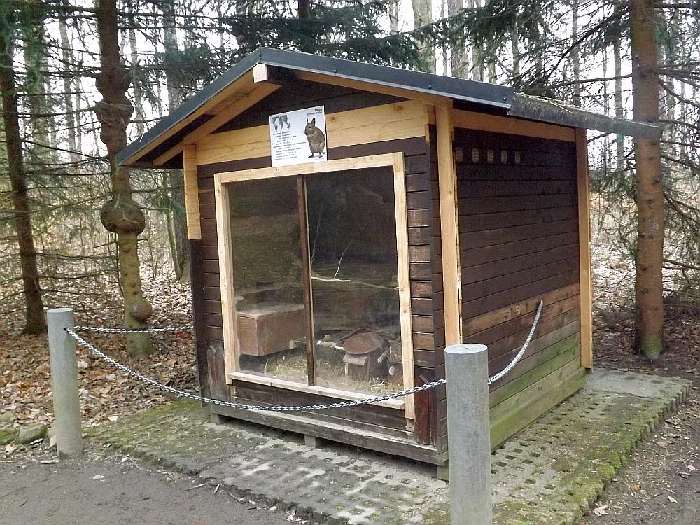 Deguanlage (Wildgehege Annaberg-Buchholz)