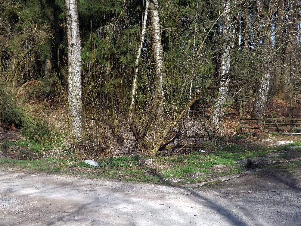 Dort stand einst eine Hühnervoliere (Wildpark Poing)