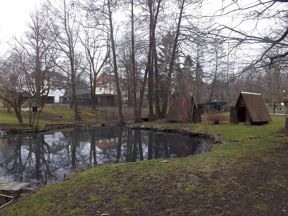 Tiergarten Freiberg