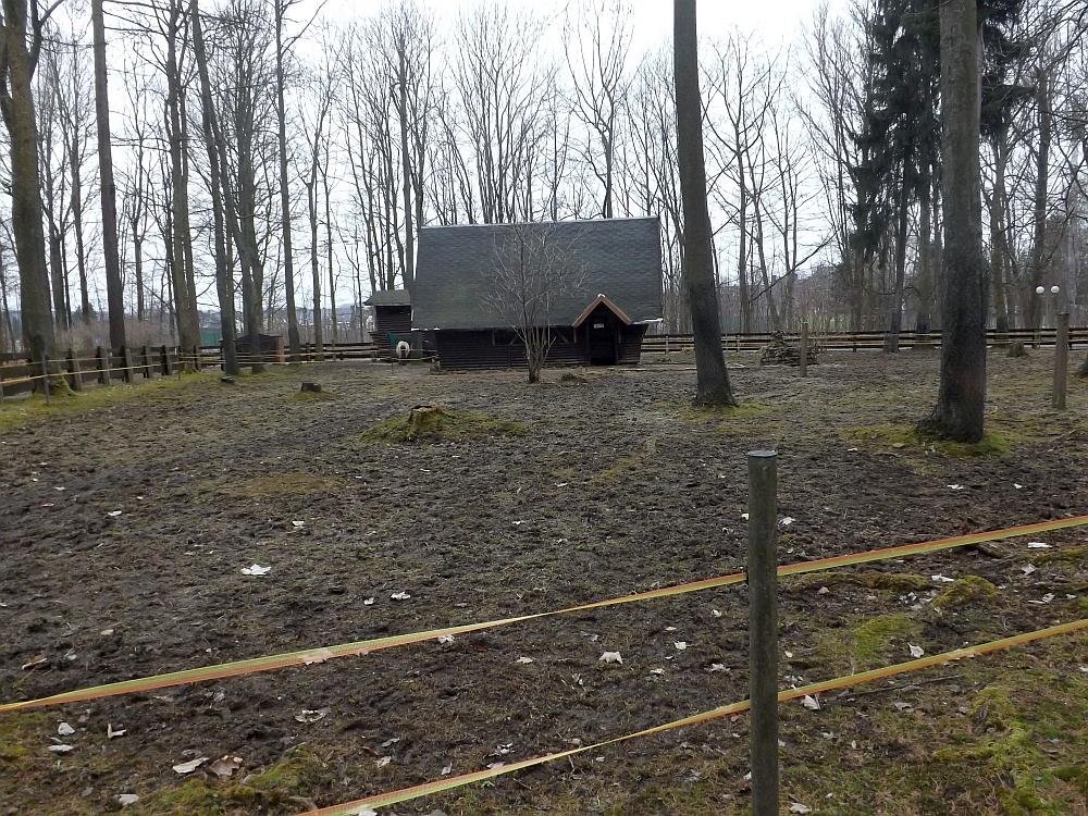 Pferdekoppel (Wildgehege Annaberg-Buchholz)