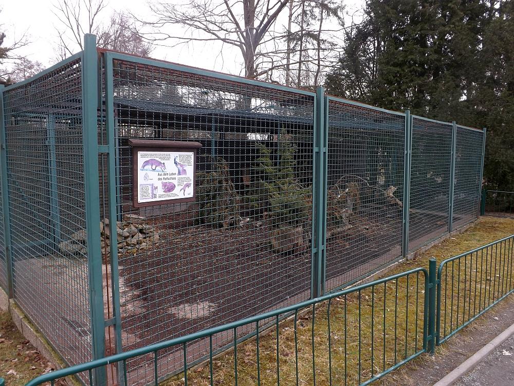 Rotfuchsanlage (Tiergarten Freiberg)