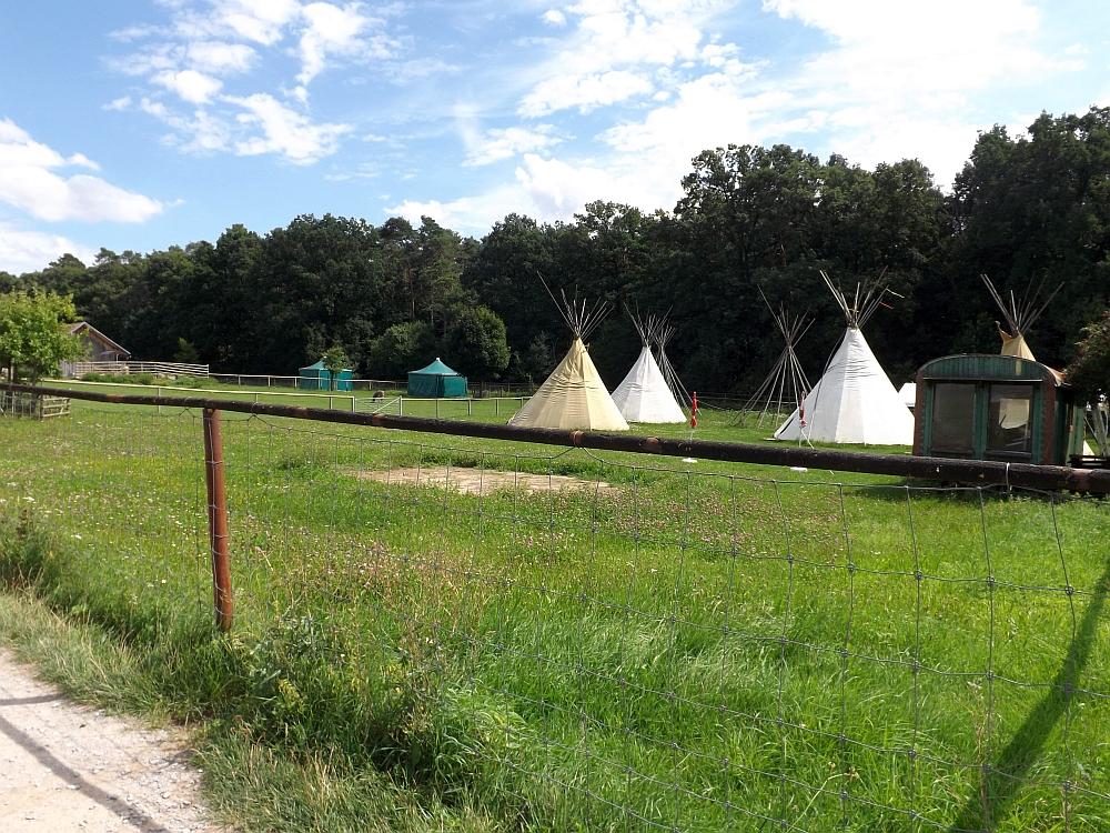 Tierpark Sommerhausen