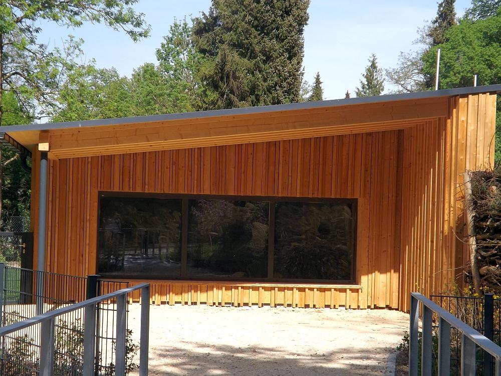 Winterquartier der Flamingos (Zoo Augsburg)