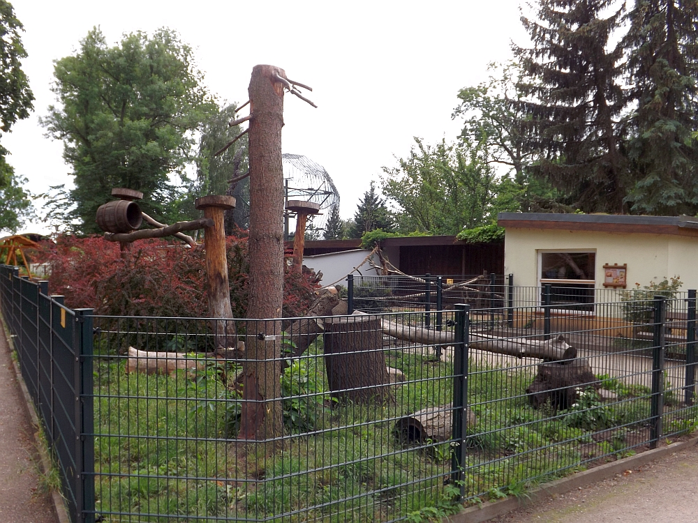 Nasenbärenanlage (Tiergarten Delitzsch)