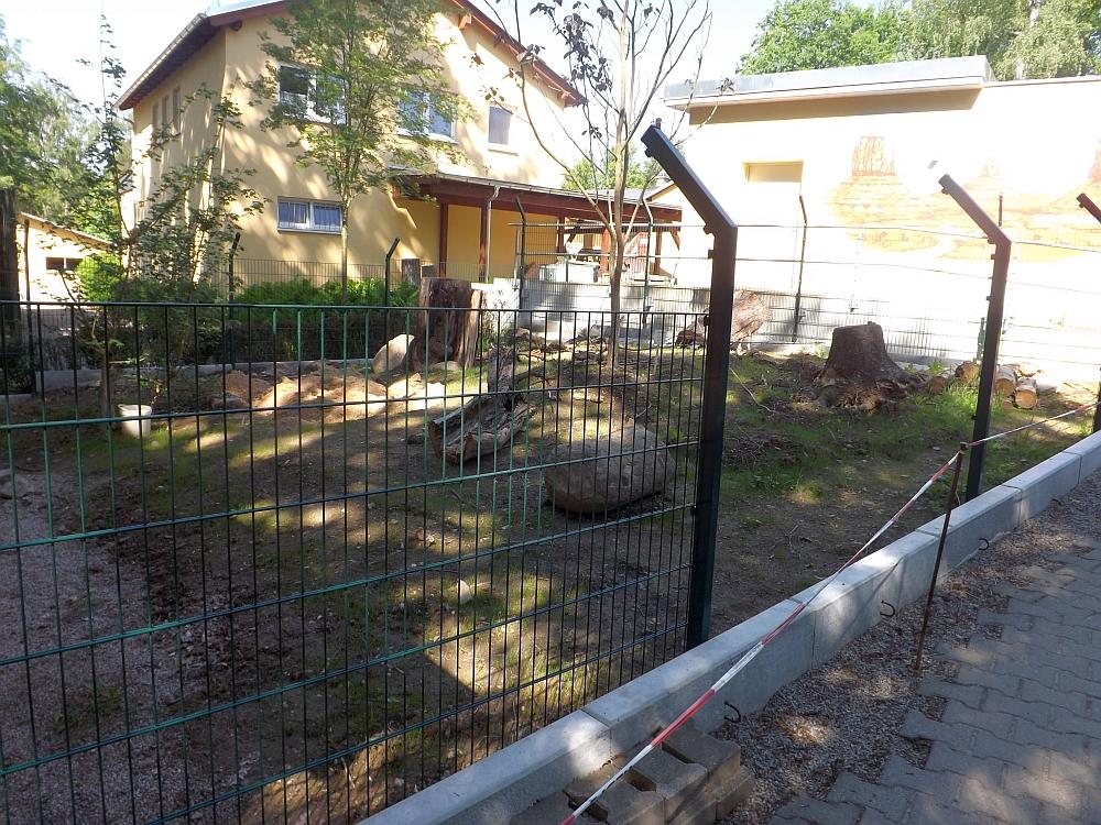 Nasenbärenaußenanlage Im Bau Tierpark Limbach Oberfrohna Der