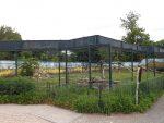 Paviananlage (Tiergarten Delitzsch)